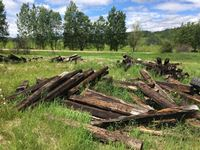 Large Quantity of Various Condition Railroad Ties